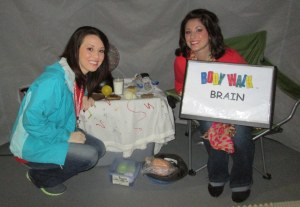 Starting with the brain, because a healthy brain makes smart choices.