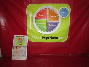 MyPlate shows how much of each food group to have on your plate