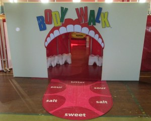 New entrance with the tongue and teeth stools. Through the mouth, the stomach is visible.